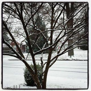 Snow2013