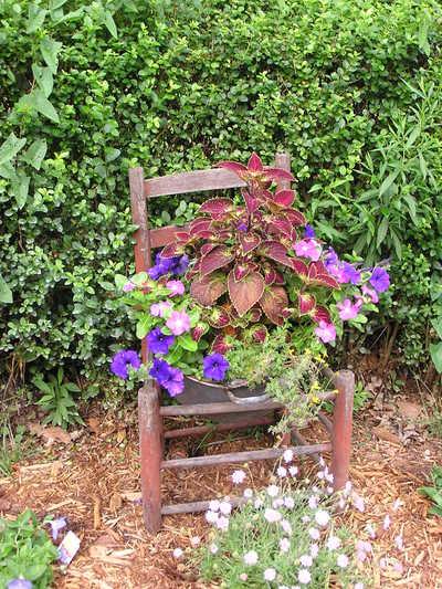 Garden1_2007